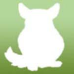 KARMY NIEPOLECANE: Vitapol/ Megan/ de Heus/ DakoArt/ Nestor/ Dadik/ Natural Vit/ Ibeka Panto/ Animals/ Karmex/ Brit/ Koliber/ Deli Nature/ Selective - ostatni post przez niki1990ldz